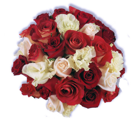 Flower Delivery Australia on Australia   Perth Florists   Perth Flower Delivery   Wedding Flowers