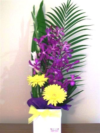Valentines Flower Delivery on Florist Perth  Flowers Perth  Flower Delivery Perth Wa Australia