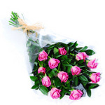You're the Best! 12 Pink Perth Roses