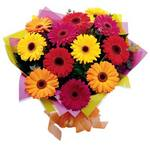 Large Colourful Bouquet of Mixed Gerberas (15) ~ Delivered