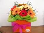 Happy ~ Bright Vibrant Gerberas delivered