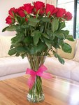 12 Long stemmed Roses in a Vase ~ Delivered