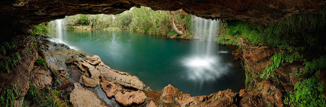 Under Fern Pool Waterfall
