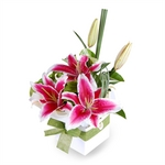 Oriental Surprise - Perth Flowers, Hand Delivered