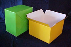 Posy Box - Medium, Gloss.