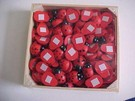 STICK-ON LADYBIRDS-LARGE