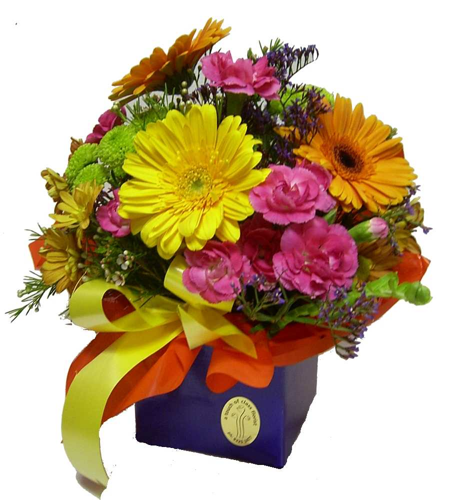 Flowers baby ts roses and t baskets perth florist delivery