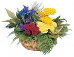 Little Garden Basket Arrangement
