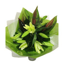 Oriental Lilium Bouquet - Yellow
