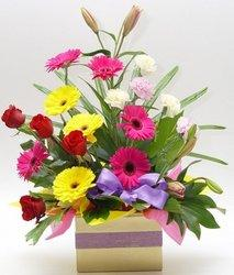 Large mixed arrangement in kraft box