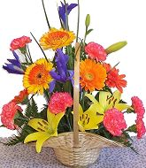 Mixed arrangement in basket