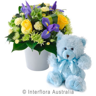 Baby flowers perth baby gifts perth western australia thomas 317 negle Images