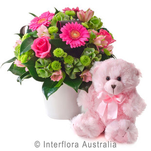 Baby flowers perth baby gifts perth western australia olivia 316 negle Images