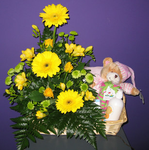 Baby flowers perth baby gifts perth western australia baby hamper celebration negle Images