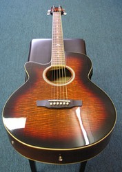 Martinez Acoustic Electric Guitar