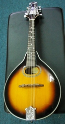 Johnson Mandolin