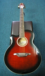 Essex (SX) Small bodied Acoustic/Electric Guitar