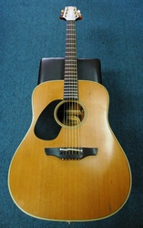 Takamine EN10 Acoustic Electric Guitar