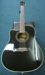 Tanglewood TW 28 CE BK