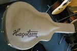 Hagstrom Guitar Case
