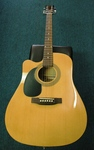Johnson Acoustic Electric Guitar