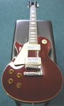 J and D LP Style Electric Guitar