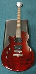 ESP EC100QM