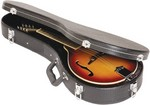 Mandolin Case