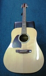 Martinez Acoustic Guitar