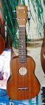 Monterey Concert size Ukulele with pickup