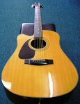 Samick Cutaway Acoustic Electric Guitar