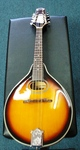 Savannah Mandolin