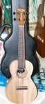 Tanglewood Union Concert Ukulele