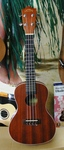 Lanikai LU21C Ukulele