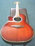 Vester Round Back Acoustic Electric Guitar