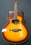 Vester VSS61 Acoustic Electric Guitar.