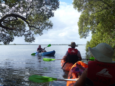 Kayak Tour 24at Bribie Island
