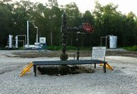 Snapper A-1 wellhead and facilities