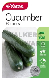 SEED VEGETABLE CUCUMBER BURPLESS