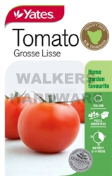 SEED VEGETABLE TOMATO GROSSE LISSE