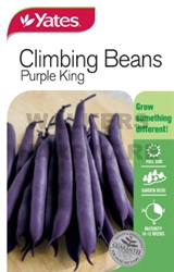 SEED VEGETABLE BEANS CLIMB P/KING(P)