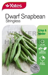 SEED VEGETABLE BEANS DWF SNAPBEAN P