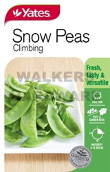 SEED VEGETABLE PEA CHINESE SNOW PEA