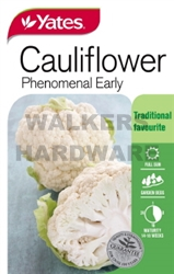 SEED VEGETABLE CAULIFLOWER PHENERLY