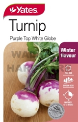 SEED VEGETABLE TURNIP PURPLE TOP