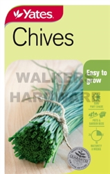 SEED HERB CHIVES
