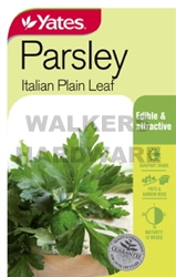 SEED HERB PARSLEY ITALIAN