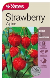 SEED STRAWBERRY ALPINE