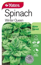 SEED SPINACH WINTER QUEEN