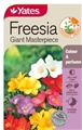 SEED FLOWER FREESIA GIANT